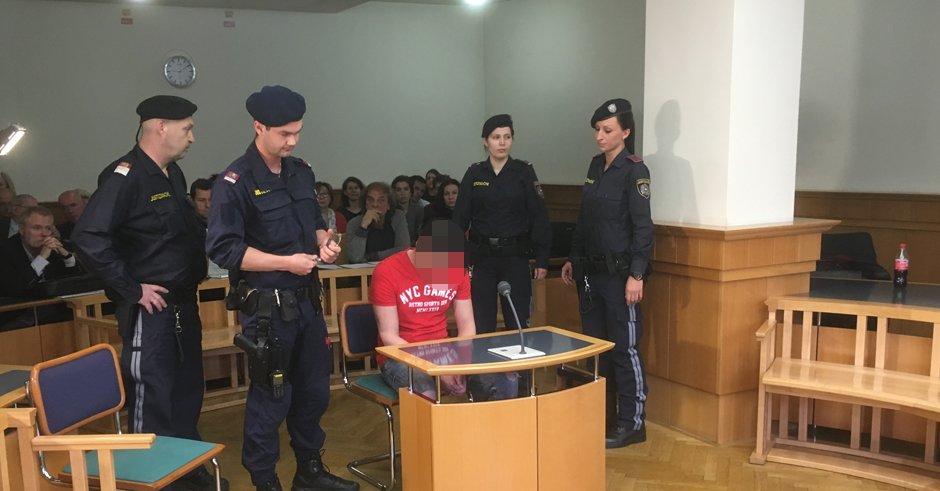 Фейк: Австрийский суд оправдал мигранта, изнасиловавшего 10-летнего мальчика