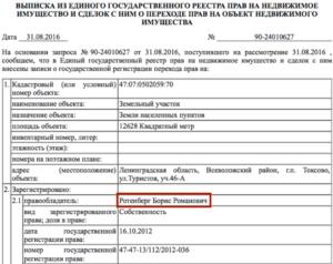 ФБК: Борис Ротенберг захватил акваторию залива в Ленинградской области