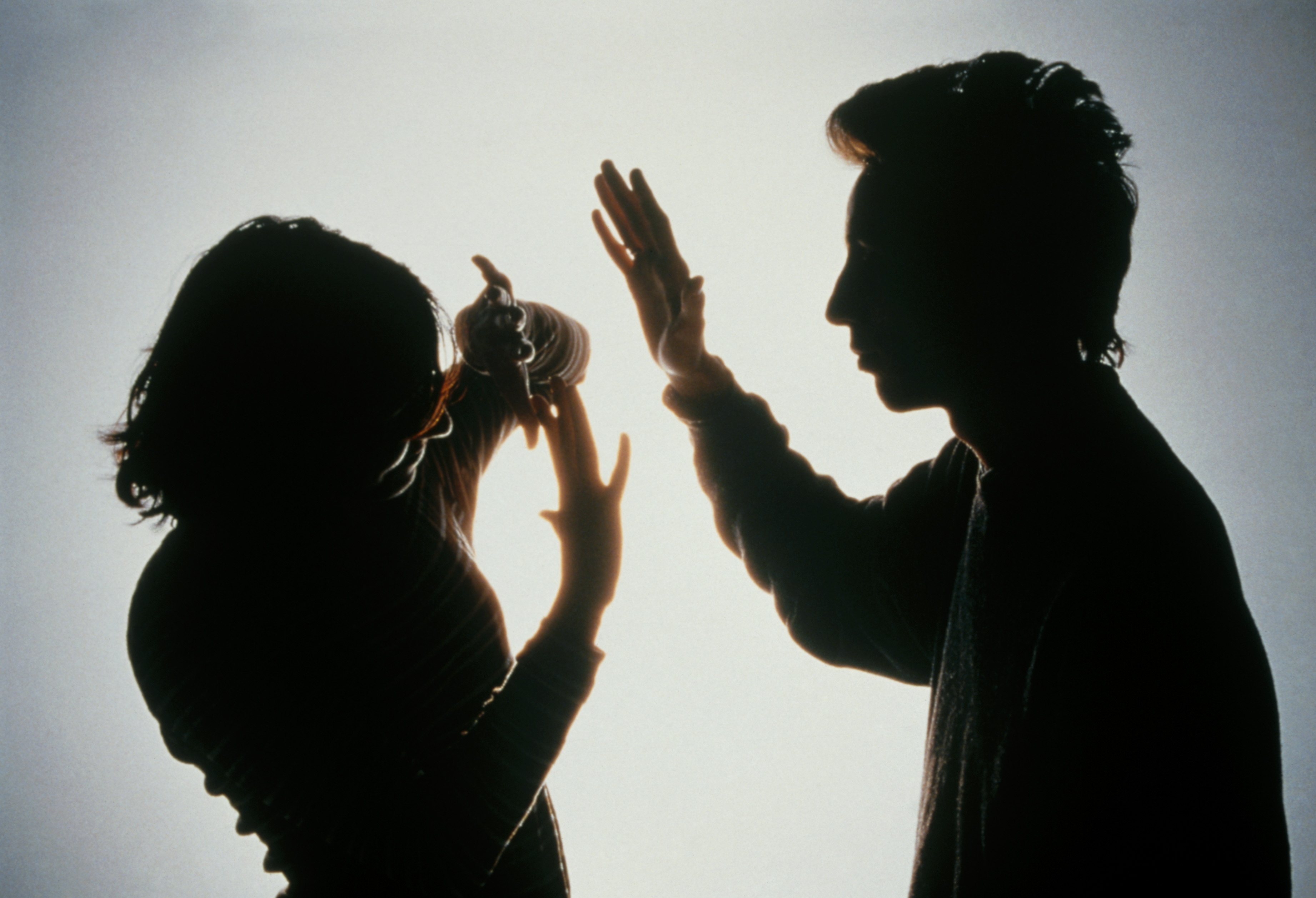 violence in the family Domestic violence can be defined to include any threatening, abusive, or violent behavior in the home, including between adult children and other adult family members.