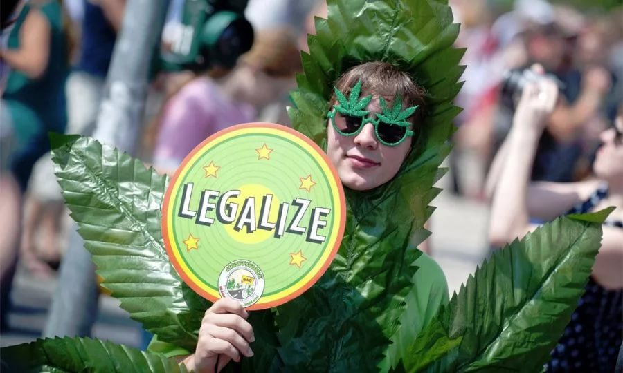 the legalization of marijuana ganja Nj marijuana legalization: home grow, 400 legal weed dispensaries ok in new bill the assembly bill to legalize marijuana in new jersey calls for 400 marijuana dispensaries, a lower tax rate and.