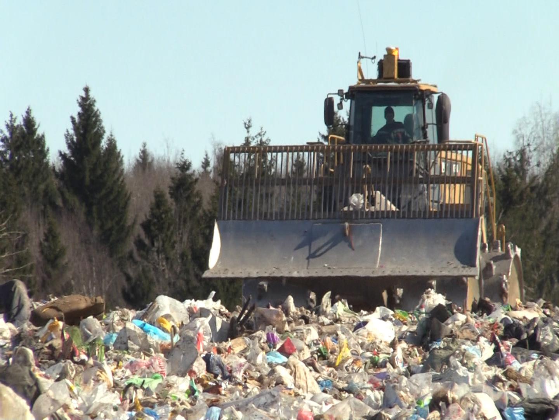Счетная палата: у Минприроды нет данных о количестве мусора в России