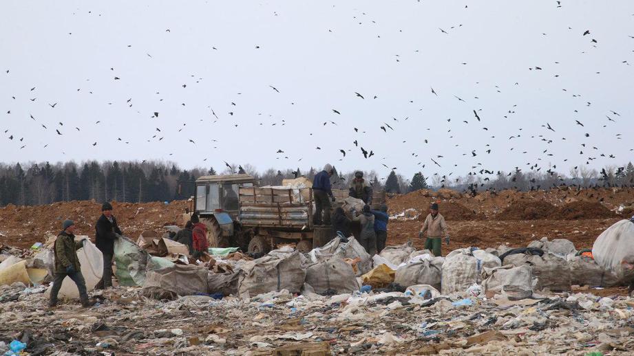 На мусорном полигоне под Волоколамском лопнул защитный купол